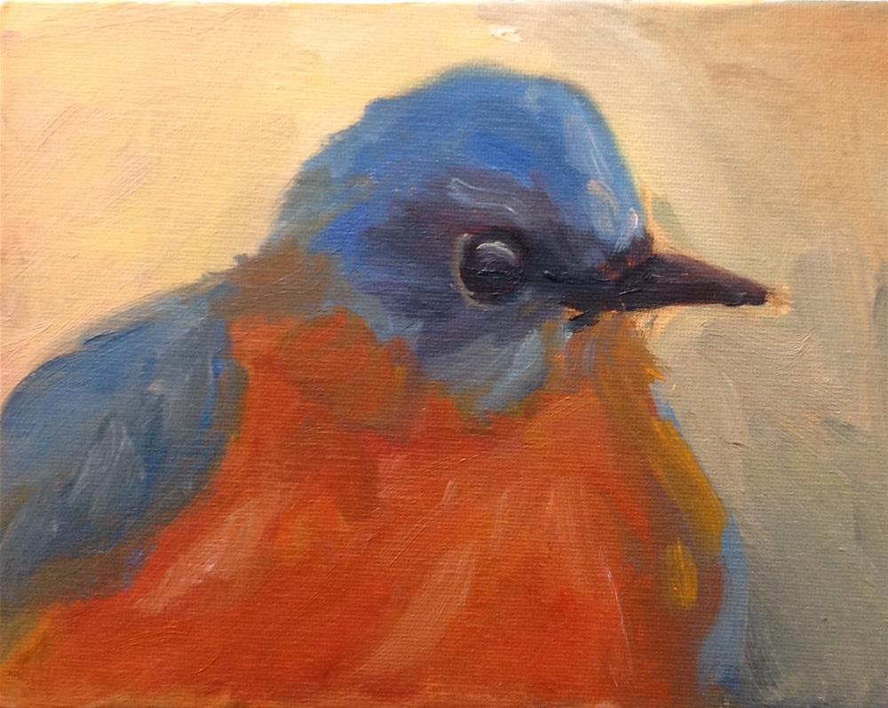 """Fat Bluebird"" original fine art by Marcia Bergtholdt"
