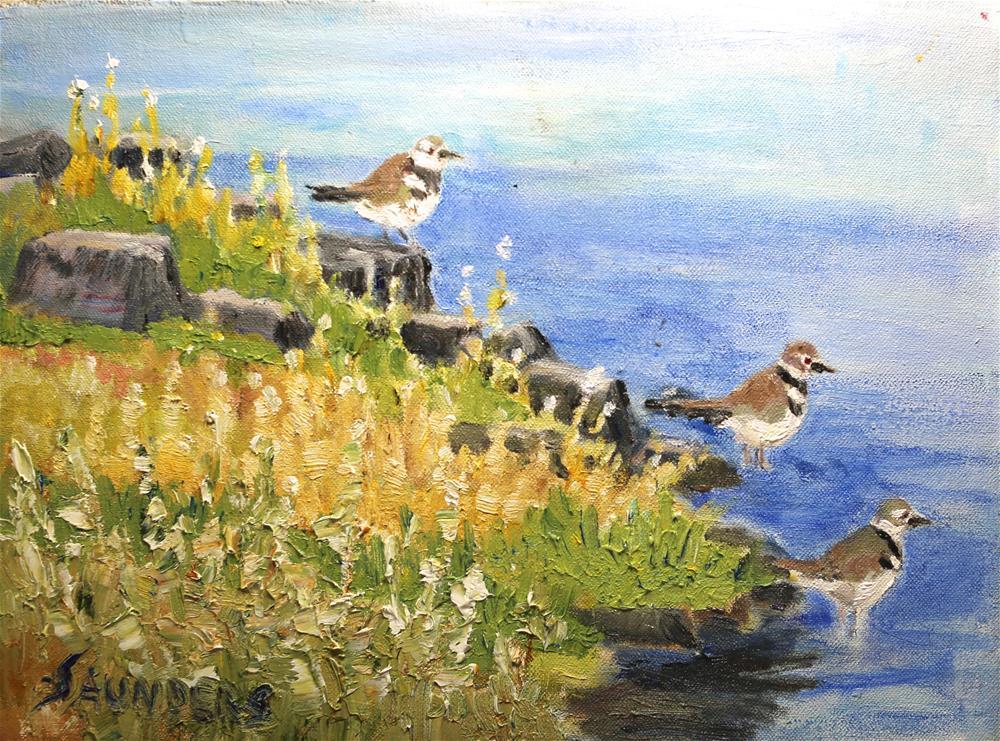 """""""Waters Edge-- Kildeer"""" original fine art by Michael Saunders"""