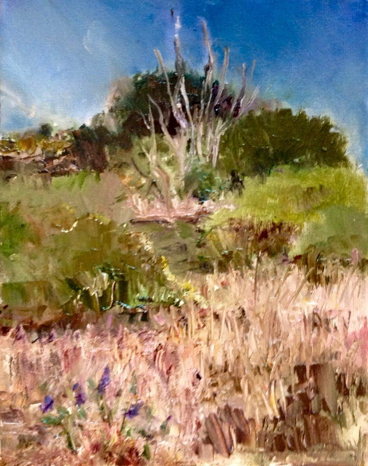 """Florida Prairie in Spring"" original fine art by Judy Usavage"