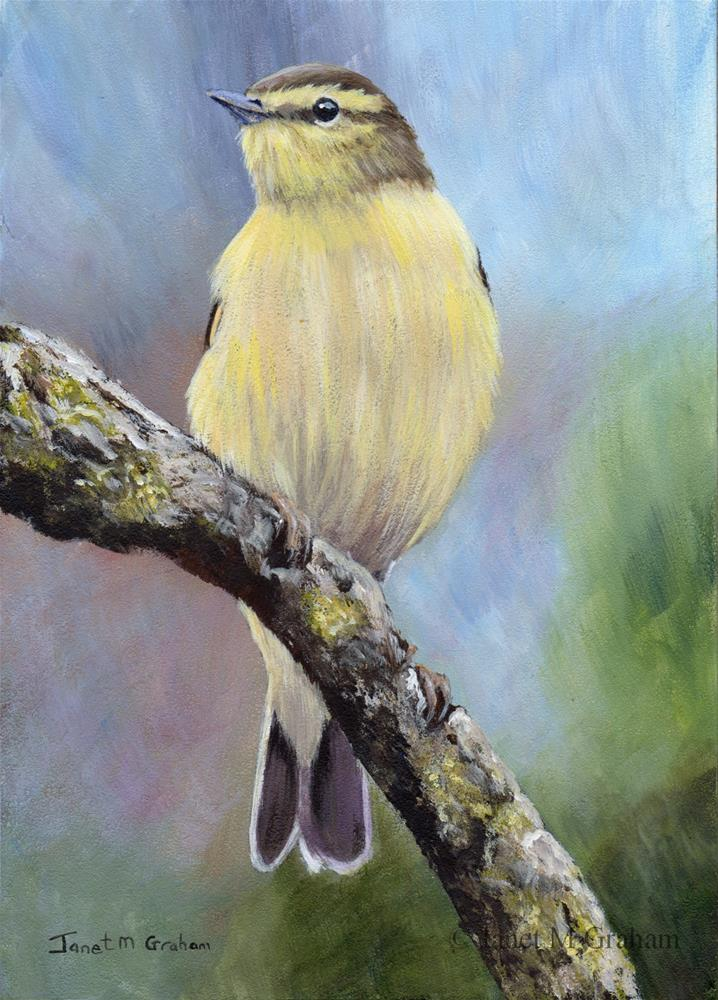 """Willow Warbler"" original fine art by Janet Graham"