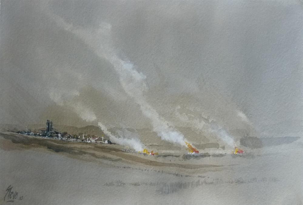 """The Burning of the sunflower fields"" original fine art by Martin Stephenson"