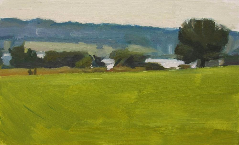 """Humid Landscape, Peace Valley Park"" original fine art by Taryn Day"