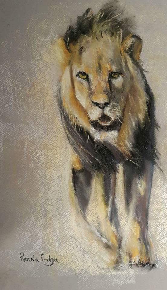 """Lion in pastel"" original fine art by Rentia Coetzee"