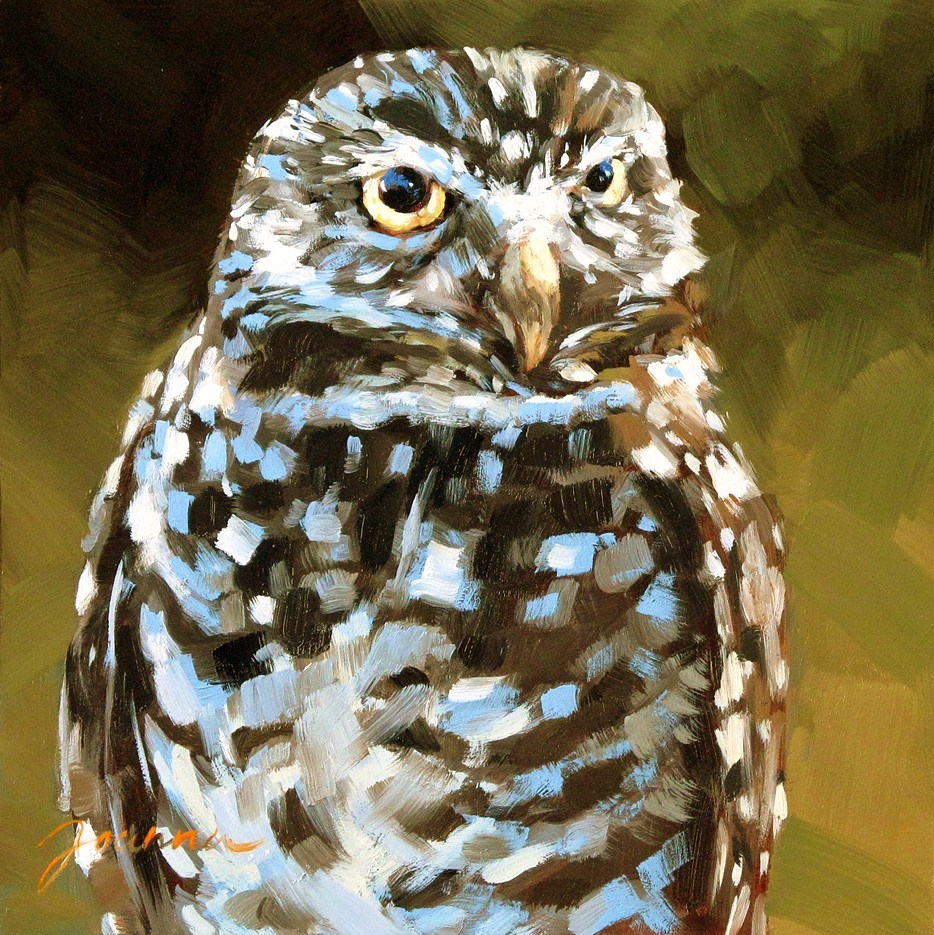 """Whooo?--Painting of a little burrowing owl"" original fine art by Joanna Bingham"