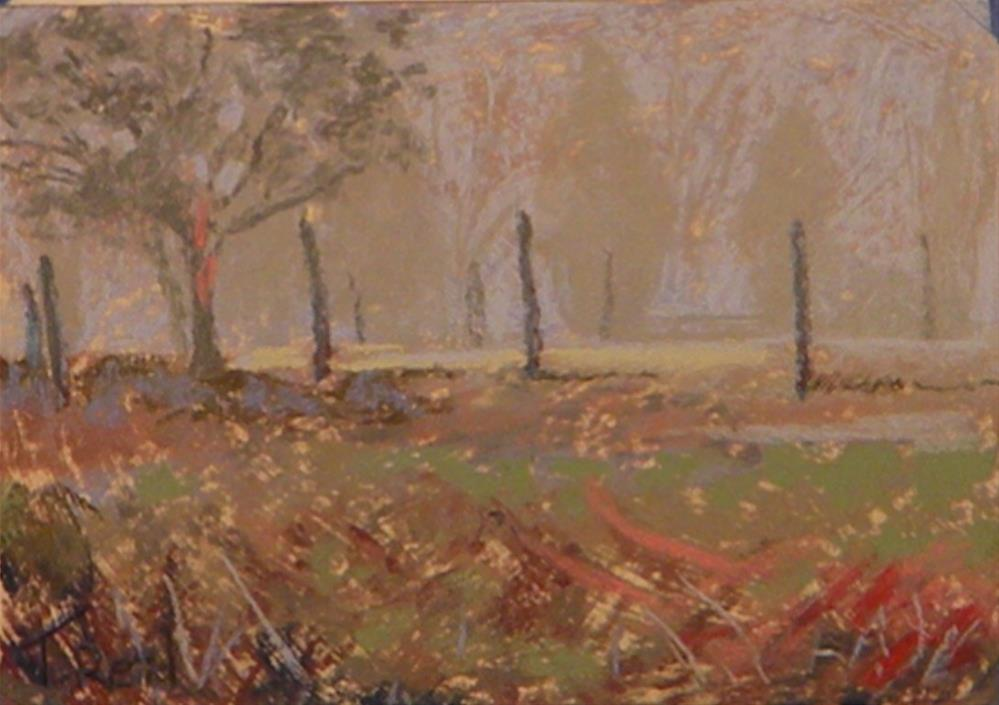 """Fog pasture posts"" original fine art by Toby Reid"