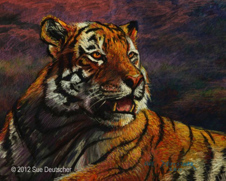 """""""Tiger in Pastel"""" original fine art by Sue Deutscher"""