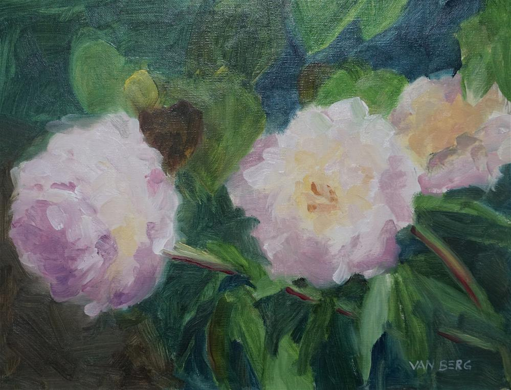 """Littleton Peonies"" original fine art by Catherine Van Berg"