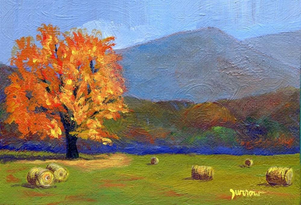 """Original Painting Autumn Golden Oak"" original fine art by Sue Furrow"