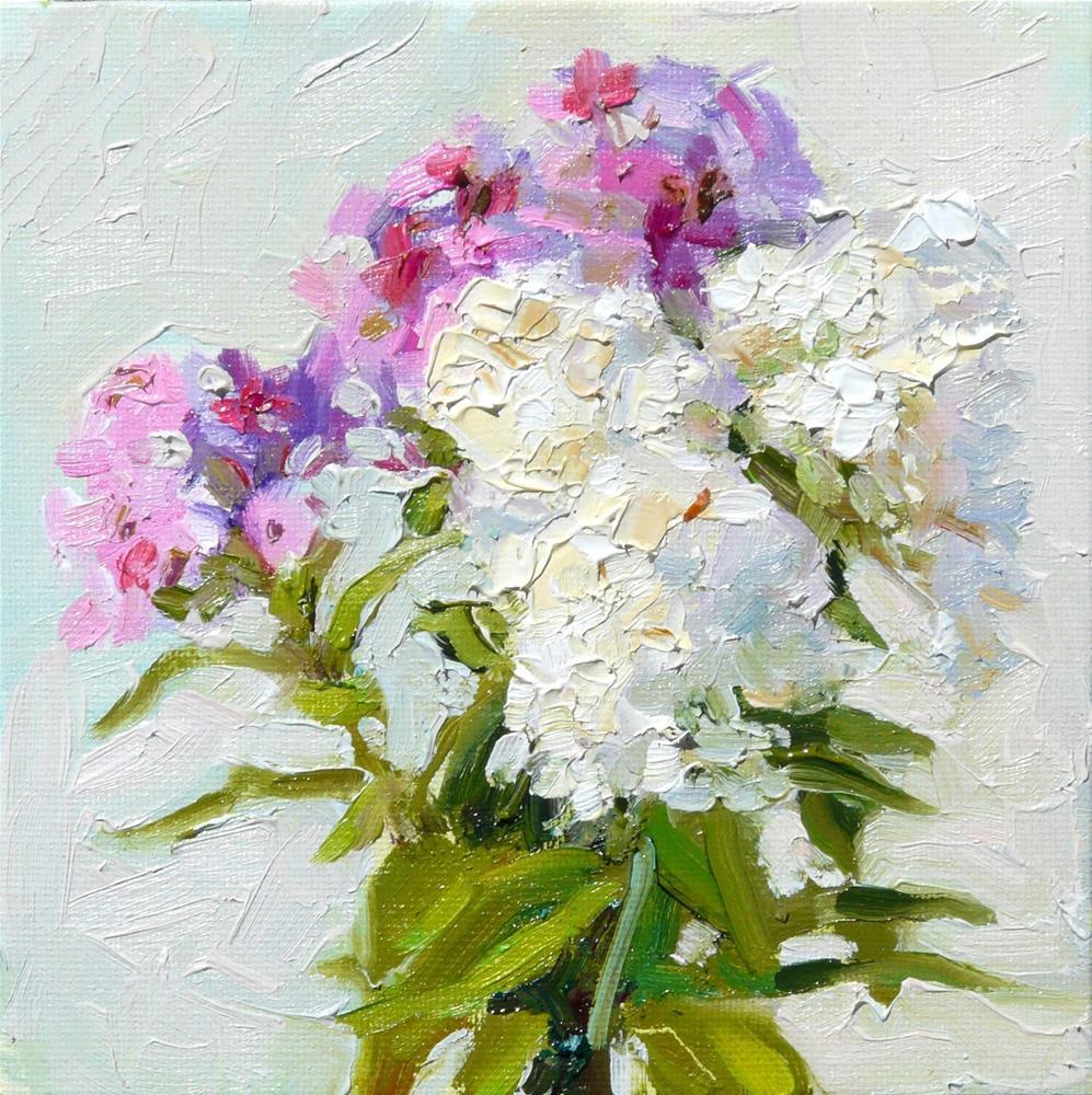 """Garden Phlox,still life,oil on canvas,6x6,price$175"" original fine art by Joy Olney"