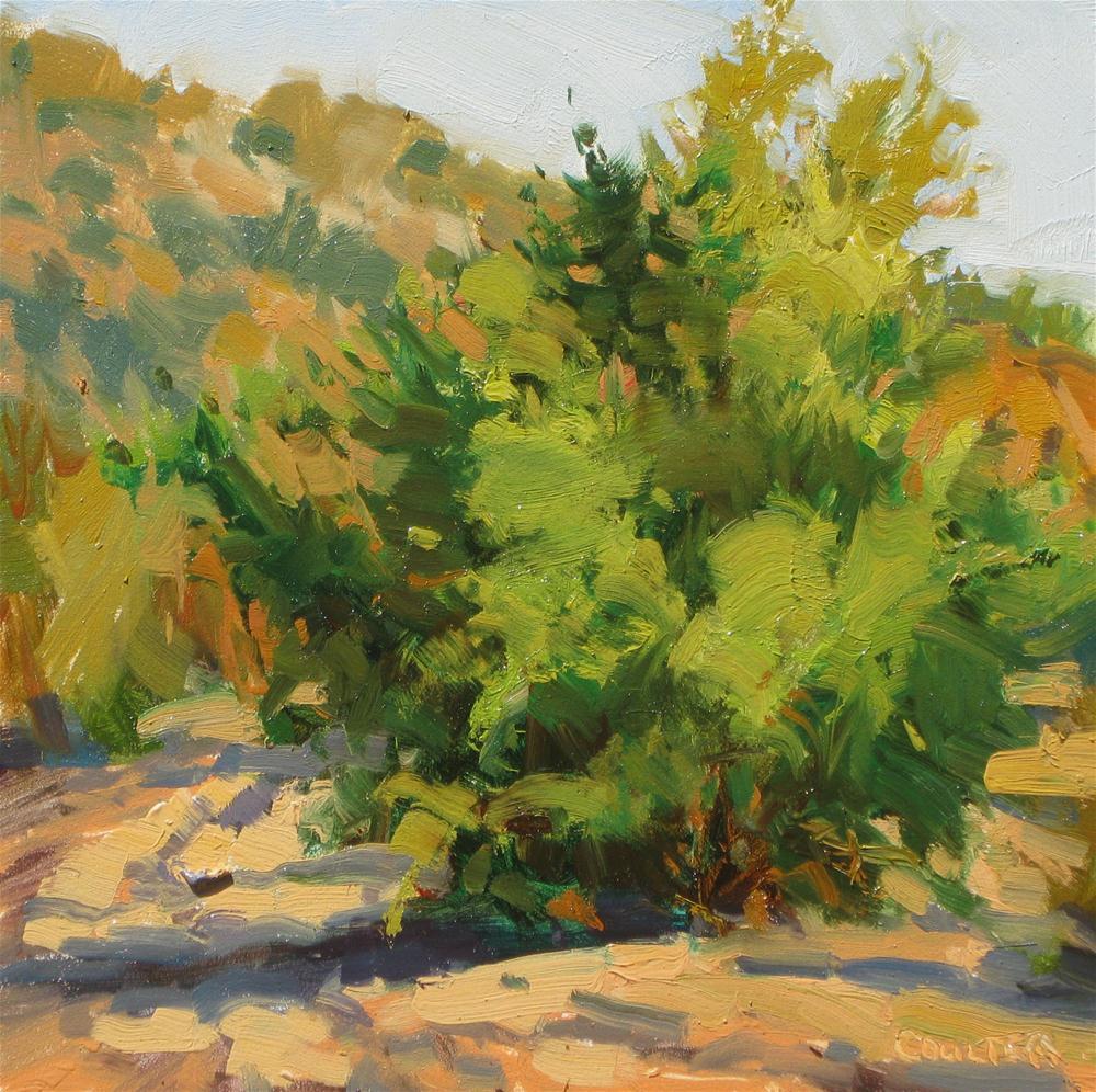 """TAMARISK TREE"" original fine art by James Coulter"