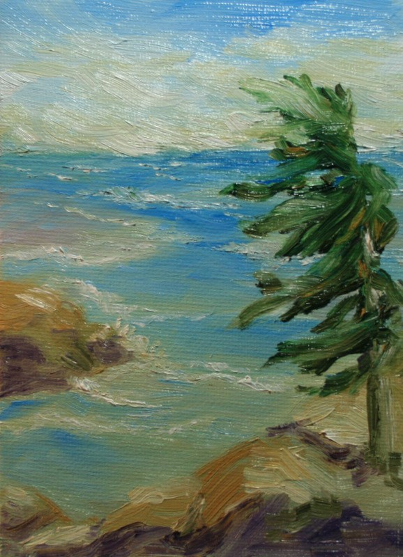 """Windblown"" original fine art by Jean Nelson"