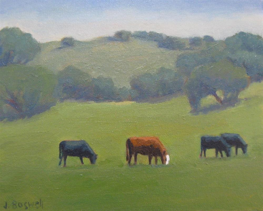 """Santa Ynez Cows"" original fine art by Jennifer Boswell"