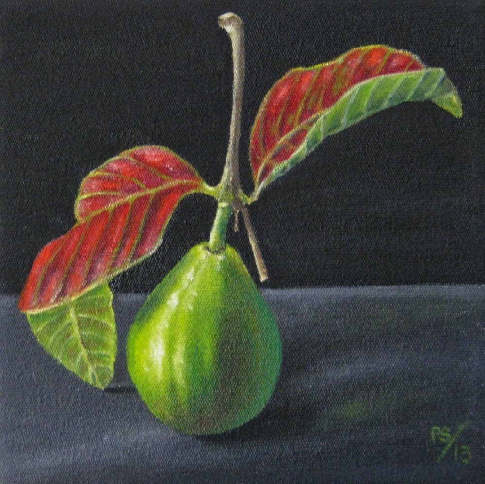 """Guava with Leaves"" original fine art by Pera Schillings"