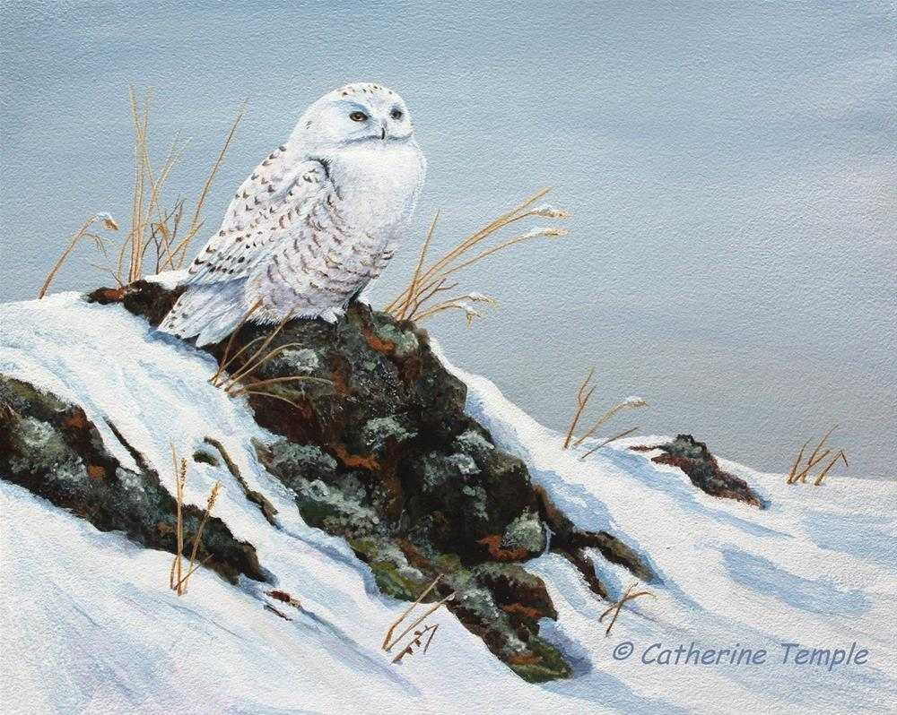 """One Snowy Day"" original fine art by Catherine Temple"