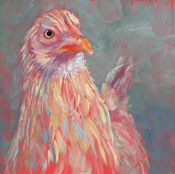 """Fine Feathered"" original fine art by Brenda Ferguson"