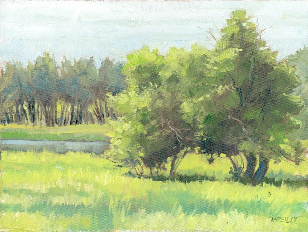 """Meadow"" original fine art by Kath Reilly"