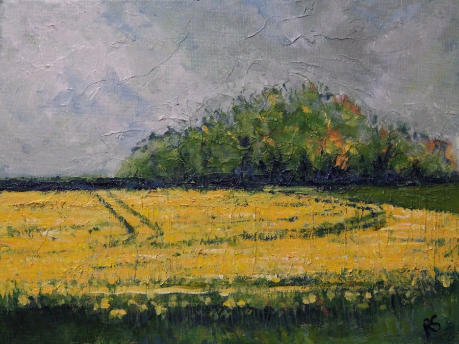 """Fields of Yellow"" original fine art by Roberta Schmidt"