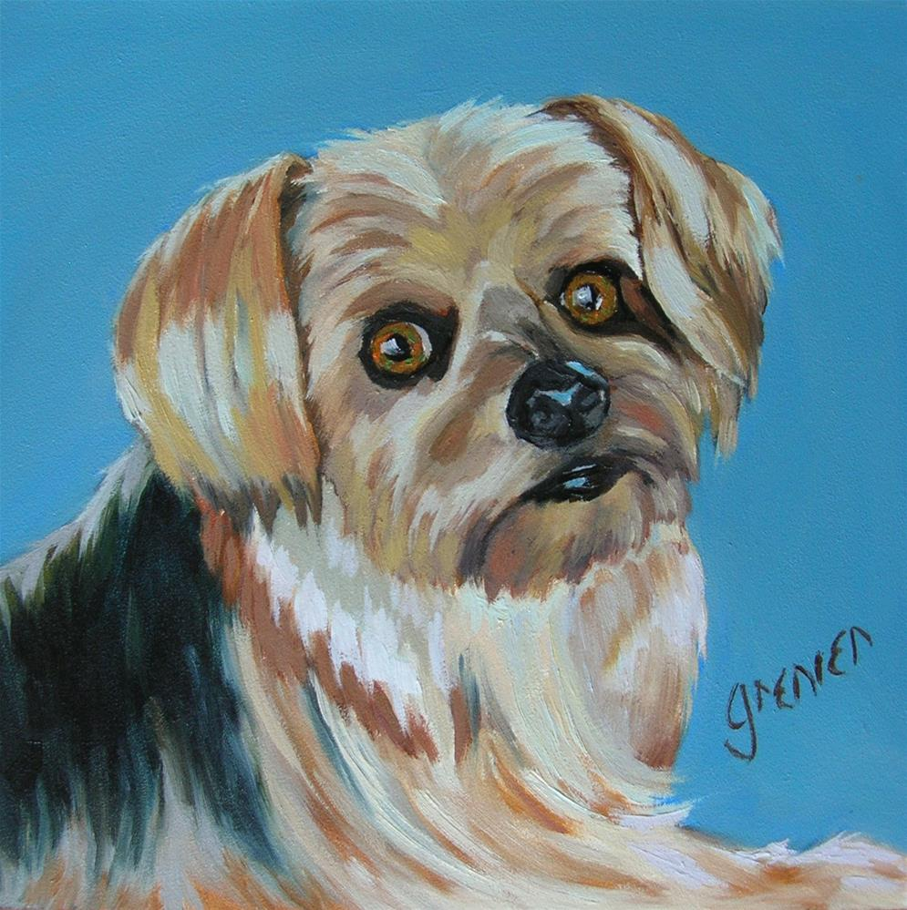 """Little Yorkie"" original fine art by jean grenier"