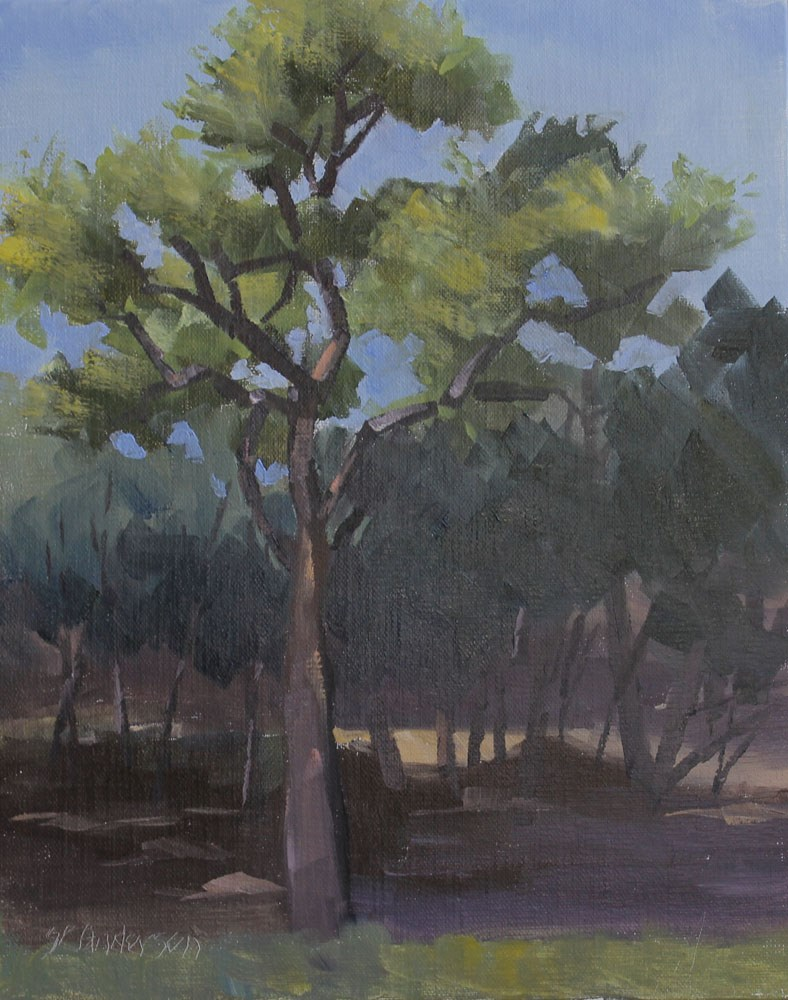 """Live Oak in the Woods"" original fine art by Susan Andersen"