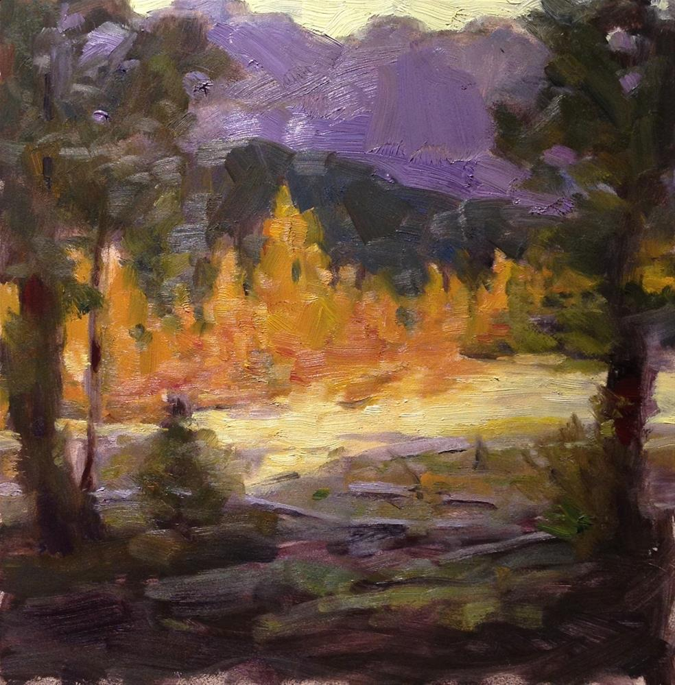 """""""Trees in Yellowstone"""" original fine art by Dorothy Woolbright"""