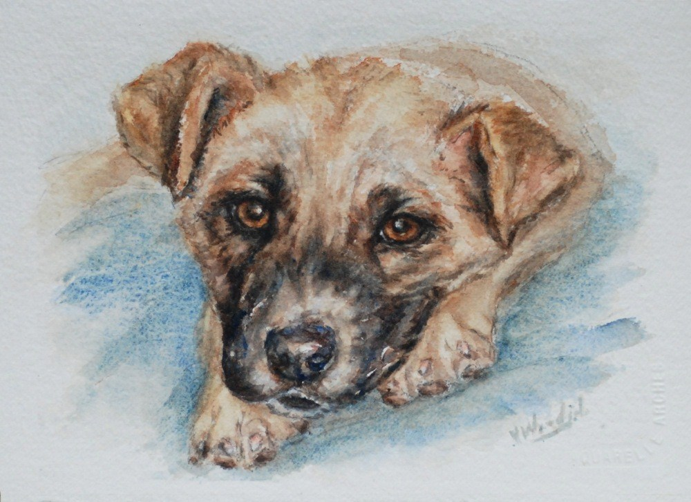 """Jennifer's pup"" original fine art by Vicki Wood"