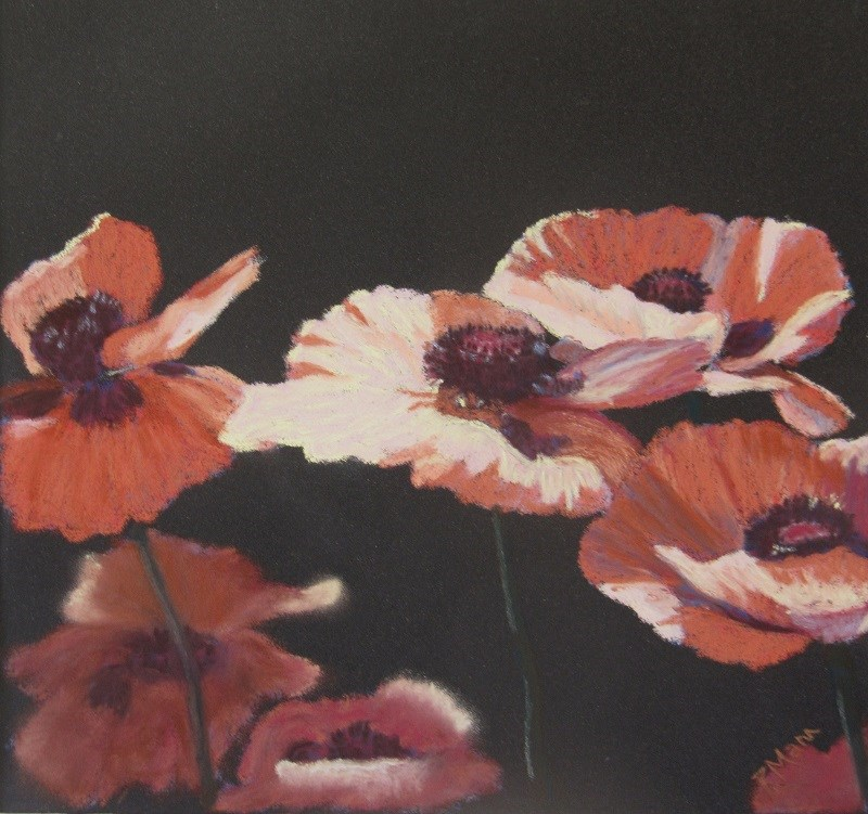"""Poppies on black"" original fine art by Ruth Mann"