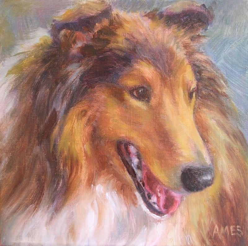 """""""Collie Smile"""" original fine art by Debra Ames"""