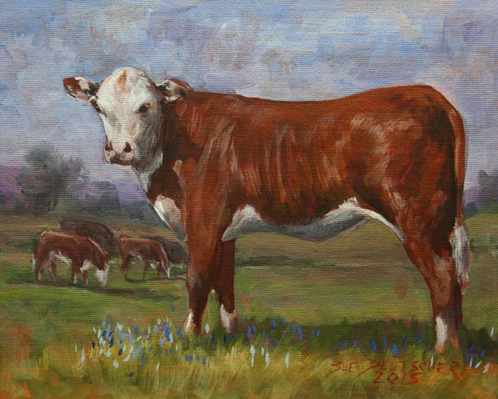 """""""Hereford Heifer"""" original fine art by Sue Deutscher"""