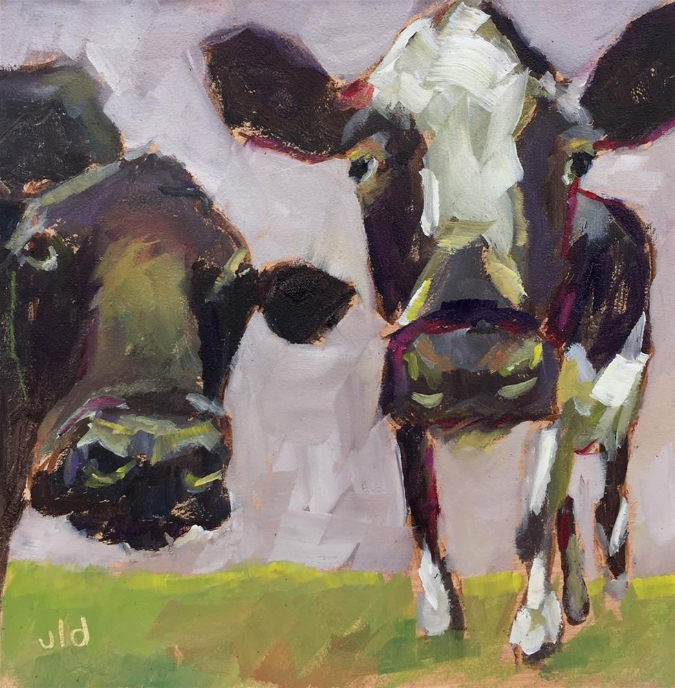 """Cow 59 Is she looking at us?"" original fine art by Jean Delaney"