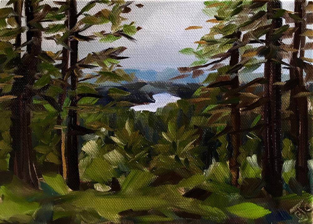 """A View Through The Forest"" original fine art by Bobbie Cook"