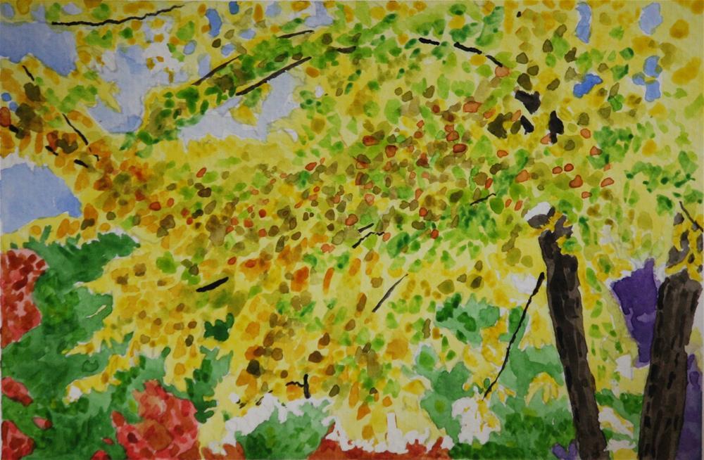 """Backlit Trees"" original fine art by Terri-Anne Barge"