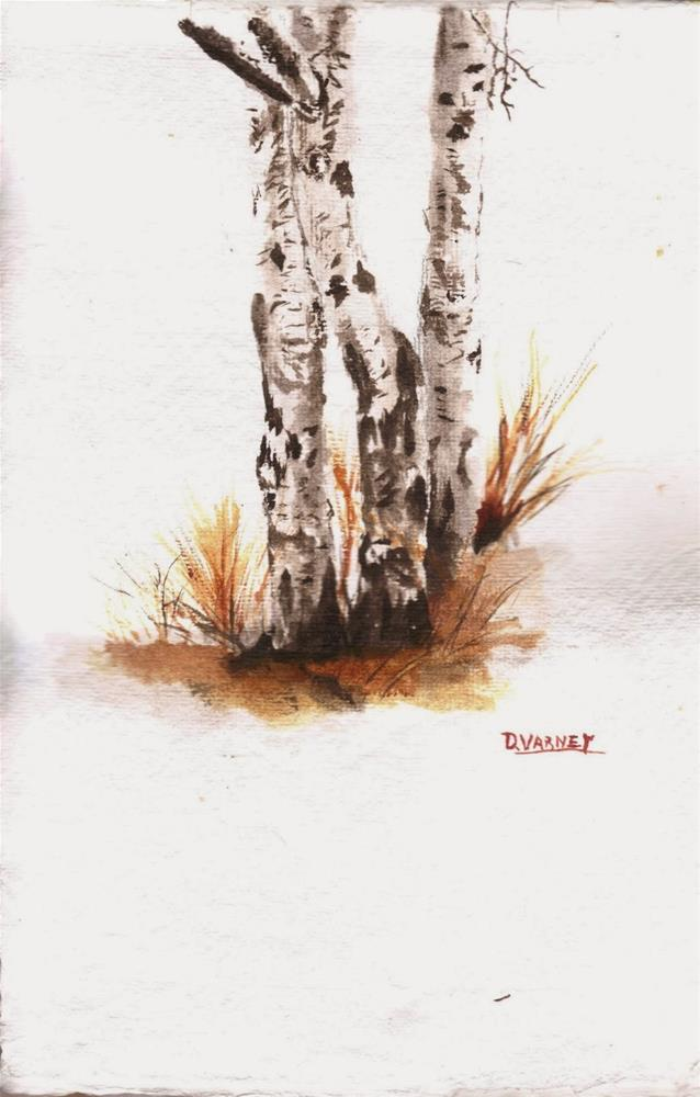 """Birch Trees"" original fine art by Daniel Varney"