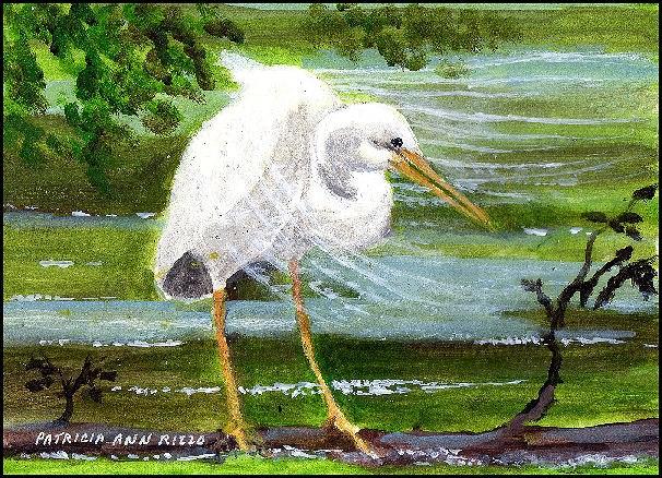 """""""Great Egret 2"""" original fine art by Patricia Ann Rizzo"""