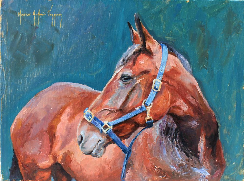"""Horse"" original fine art by Marco Vazquez"