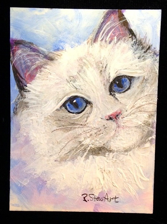 """ACEO Blue Eyed Ragdoll Cat Kitten White feline Pet Portrait Penny Lee StewArt"" original fine art by Penny Lee StewArt"