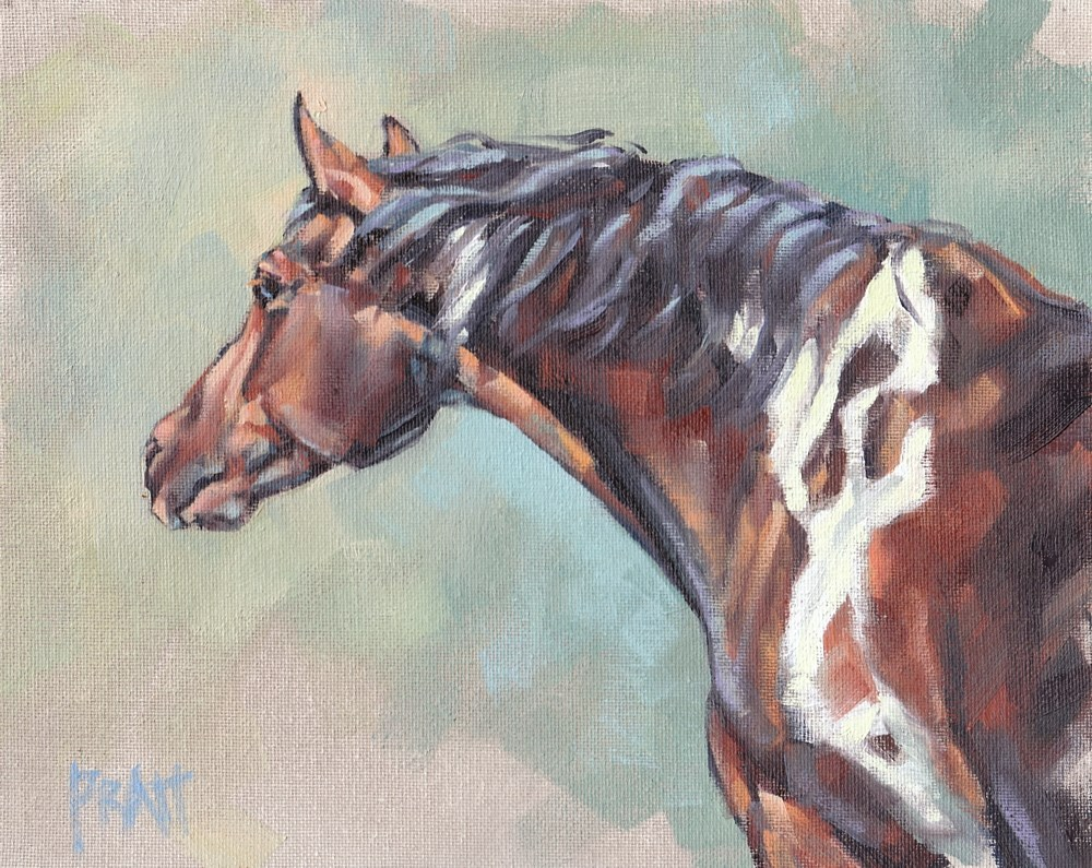 """Tobiano on an Angle"" original fine art by Jennifer Pratt"