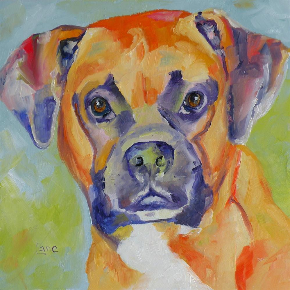 """ROXY 77/101 OF 101 PET PORTRAITS IN 101 DAYS © SAUNDRA LANE GALLOWAY"" original fine art by Saundra Lane Galloway"