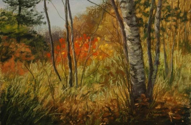 """Sunlight on Sumac"" original fine art by Susan Klabak"