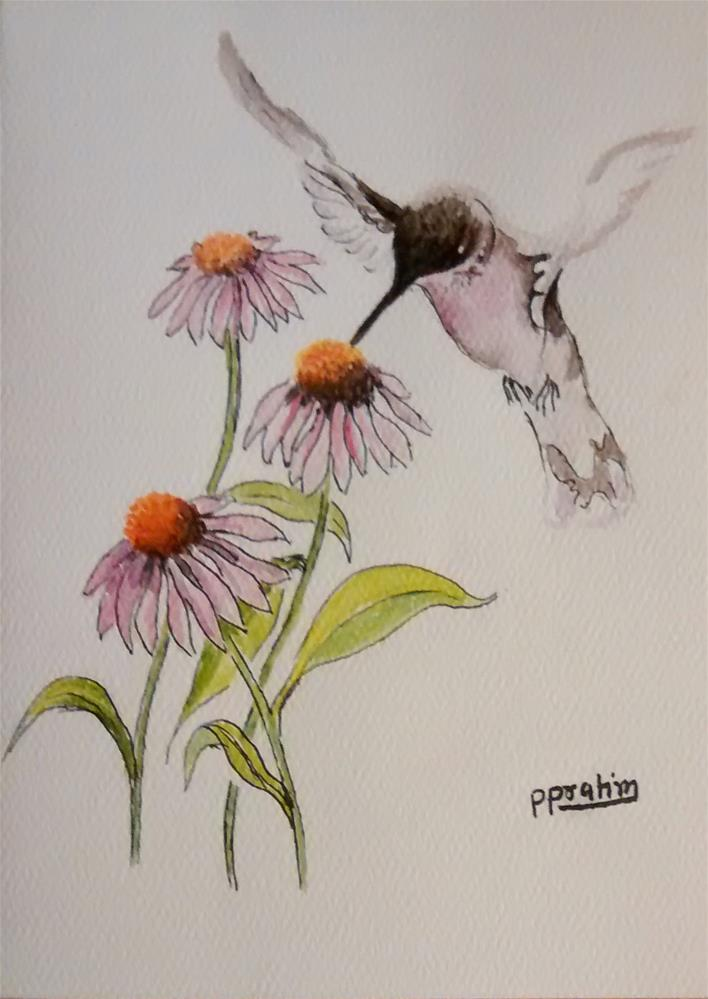 """Humming bird"" original fine art by Pratima Patel"