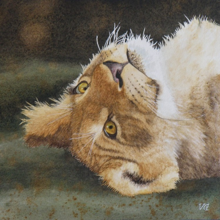 """Lion Cub"" original fine art by Vicki Greene"