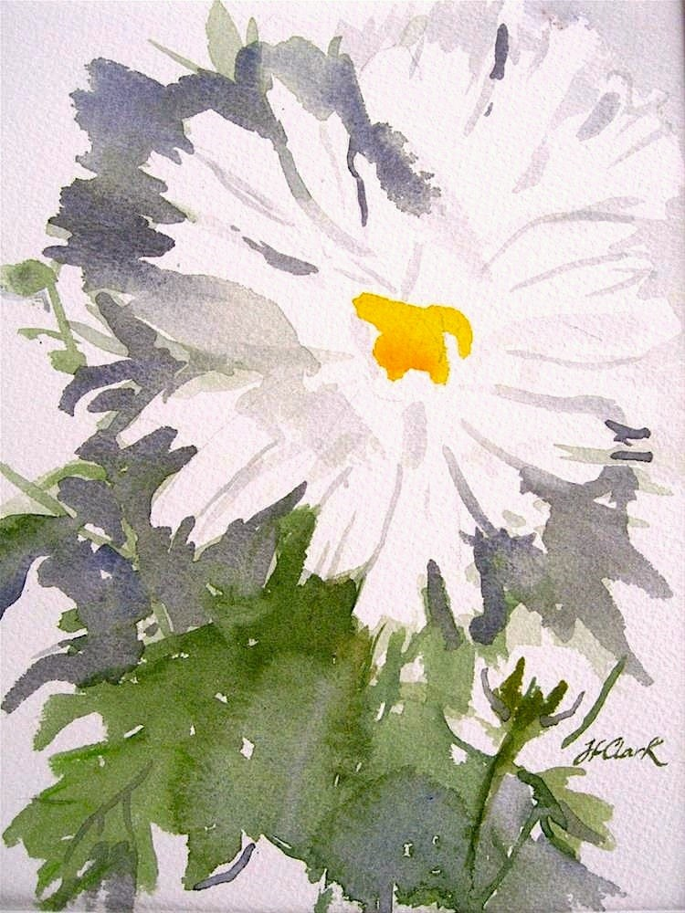 """Michaelmas Daisy"" original fine art by Judith Freeman Clark"