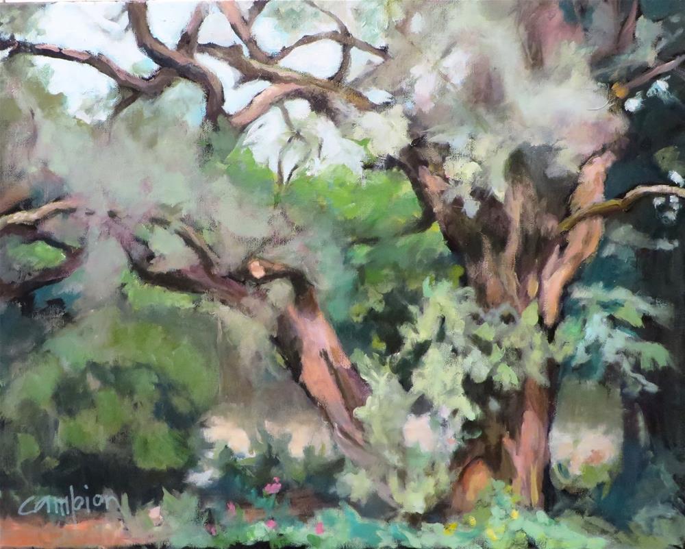 """826 Russian Olive"" original fine art by Diane Campion"