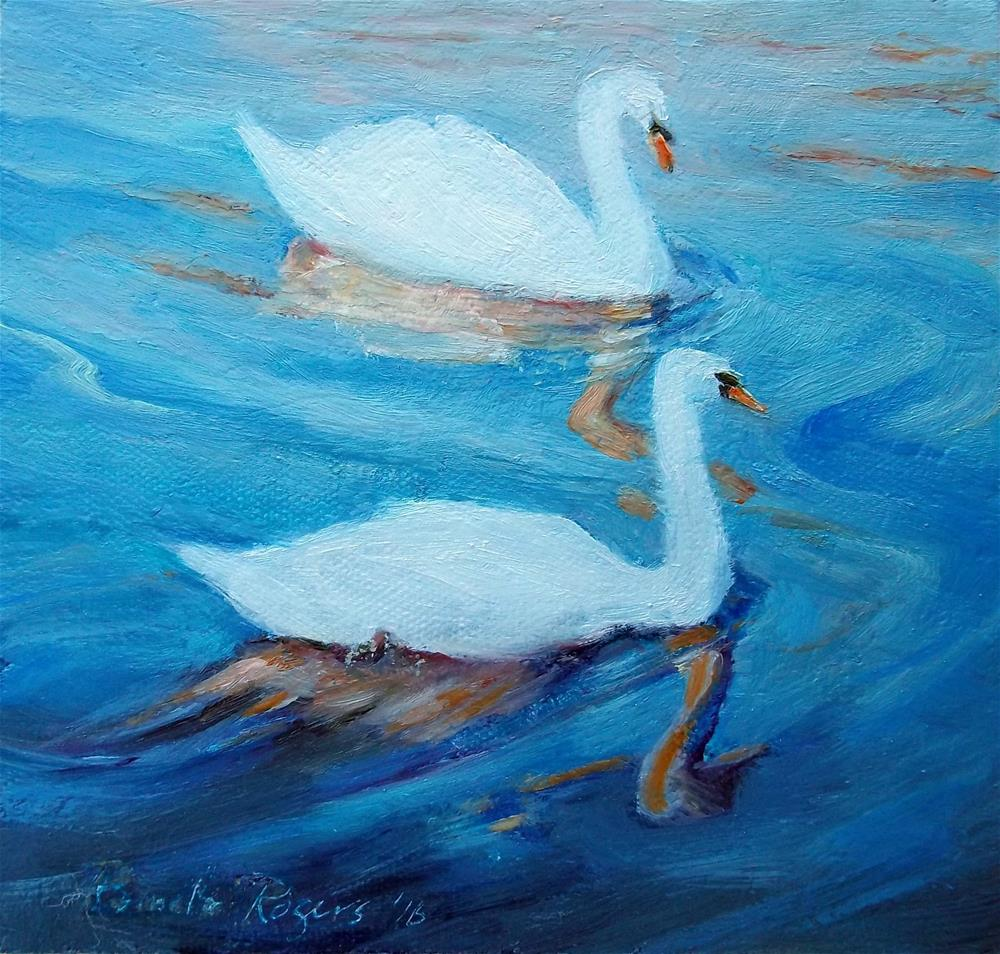 """Bruges Swans"" original fine art by Pamela Jane Rogers"