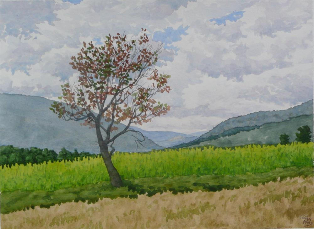 """Lone Apple Tree"" original fine art by Greg Arens"