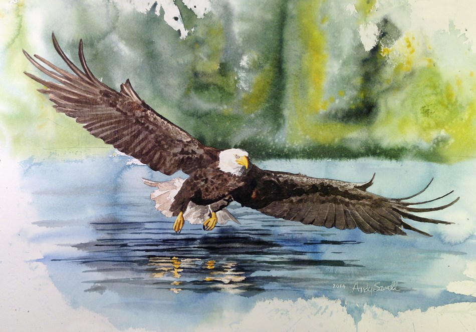 """E is for Eagle"" original fine art by Andy Sewell"