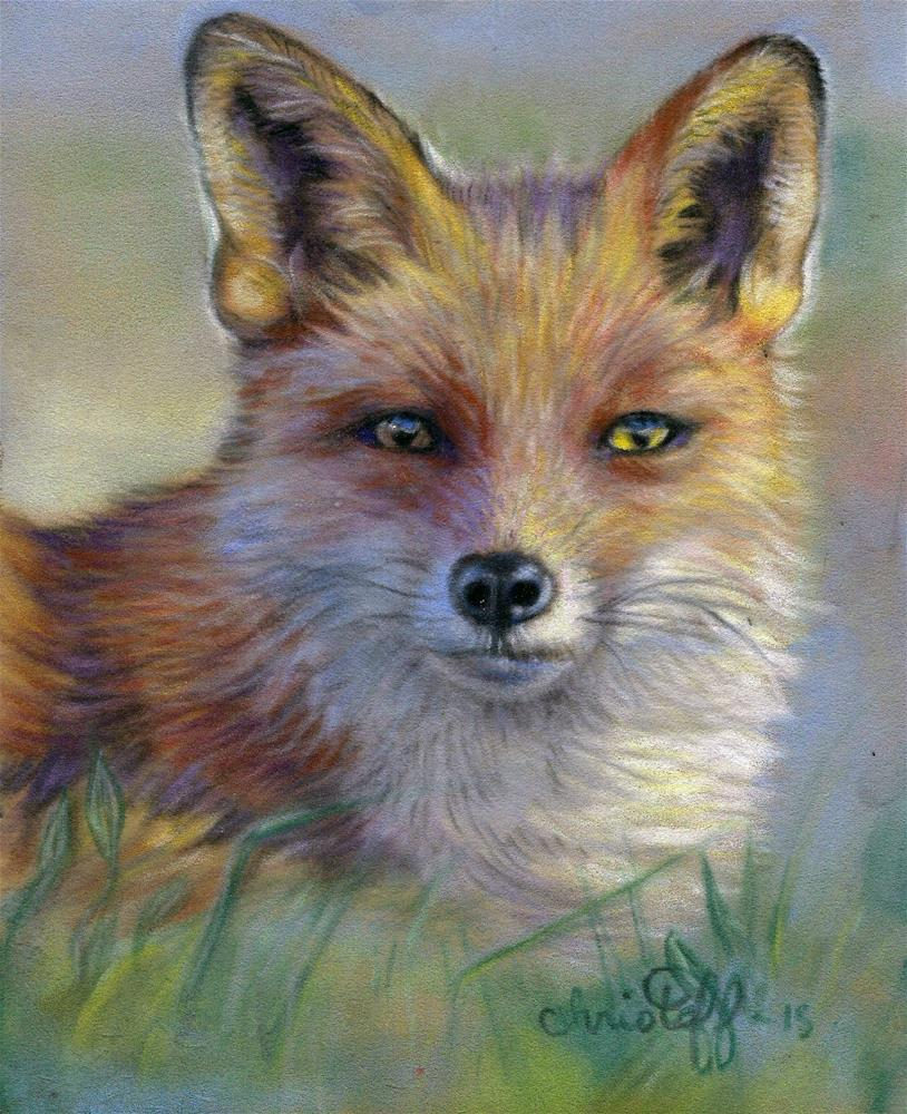 """Fox in the morning"" original fine art by emily Christoff-Flowers"