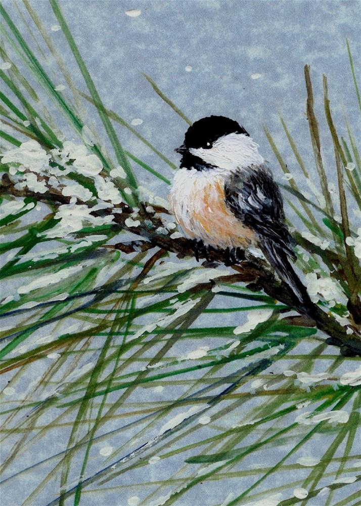"""Snow Pine Chickadee Bird # 2 (C) 2006 by K. McDermott"" original fine art by Kathleen McDermott"