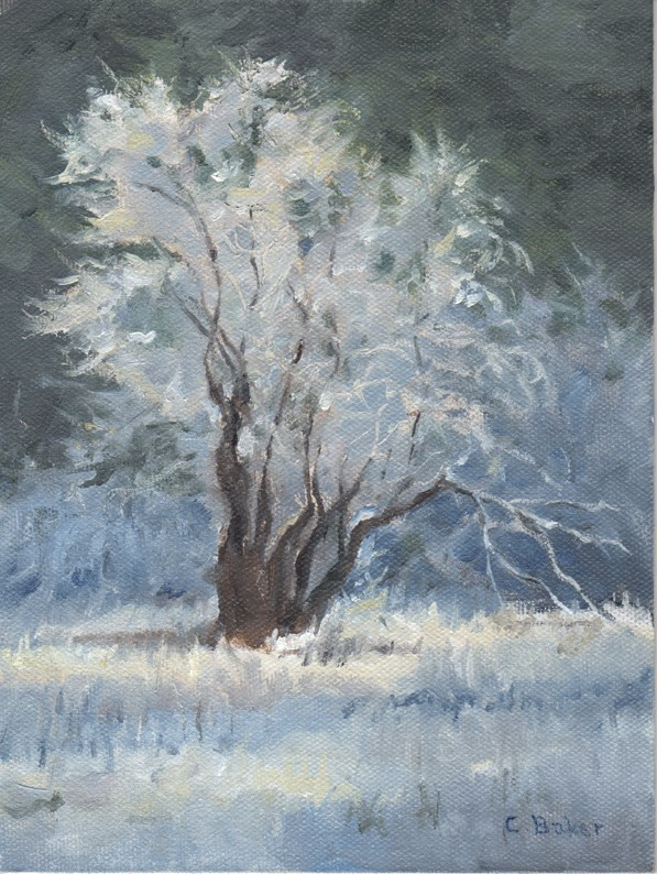 """Frosty Willow"" original fine art by Carole Baker"