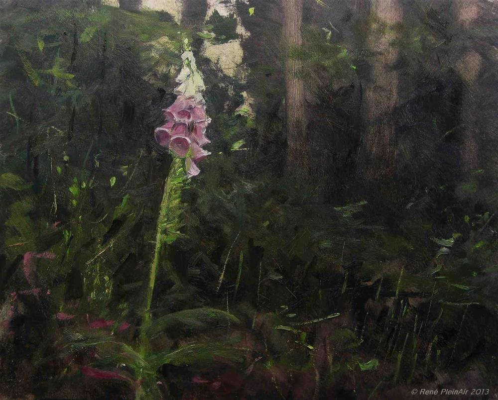 """Foxglove. Doetinchem, Holland."" original fine art by René PleinAir"