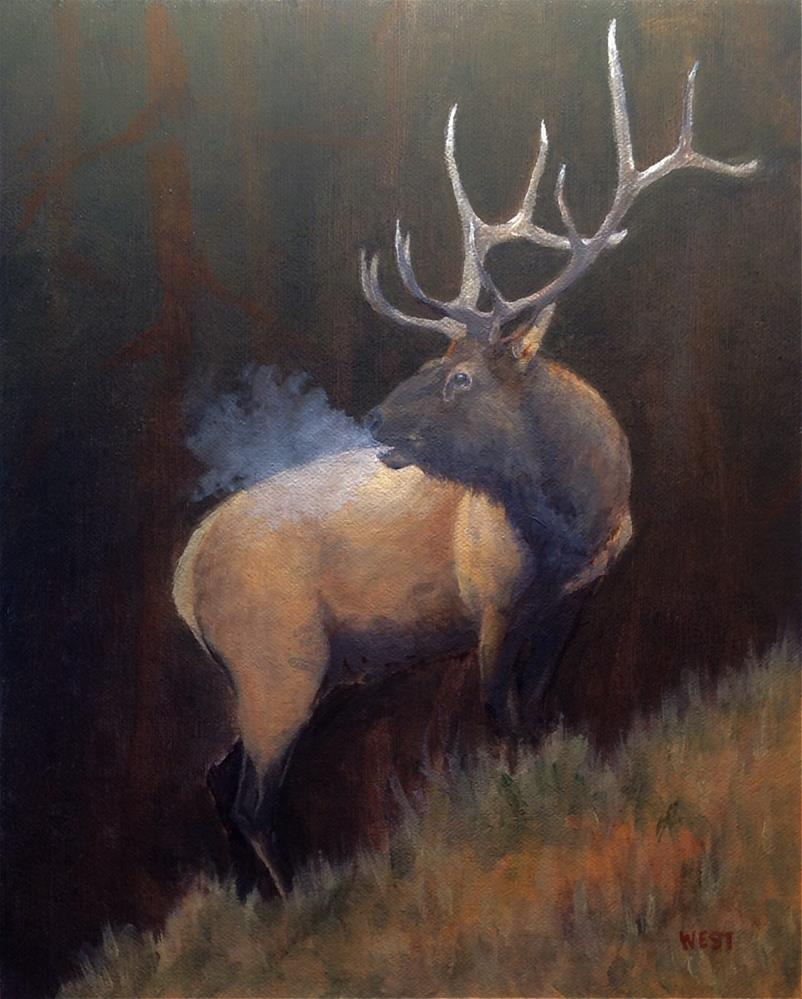 """""""Rocky Mountain Elk"""" original fine art by James West"""